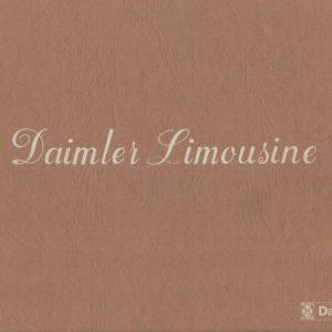 MANUALE USO E MANUTENZIONE DAIMLER DS420 LIMOUSINE