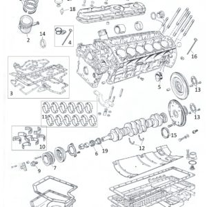 SET GUARNIZIONI BASAMENTO XJS V12